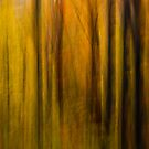 Autumn Treasure 3 by Peter O'Hara