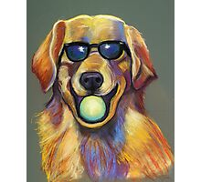 Golden Retriever with Tennis Ball Photographic Print