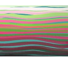 Green and Pink Zebra Photographic Print