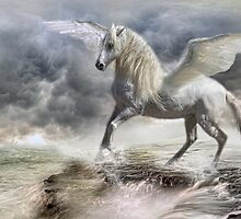 I am Pegasus by Trudi's Images