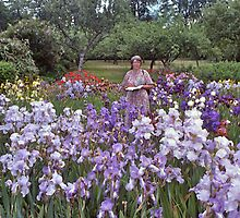 Iris Blooms, Kew Gardens, UK. by johnrf