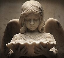 Weeping Angel 1 by Philip Allgeier