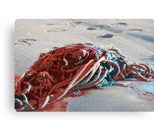 Seashore Carnage Canvas Print