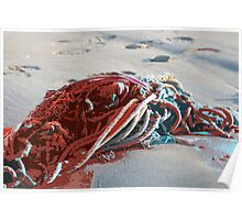 Seashore Carnage Poster