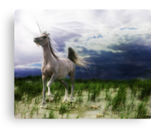 The Stormhorse Canvas Print
