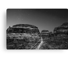 light the outback path monotone Canvas Print