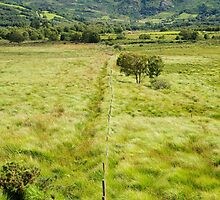 fence leading to green rocky mountains  by morrbyte