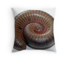 North American Millipede Throw Pillow