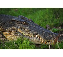 crocodile up close and personal Photographic Print
