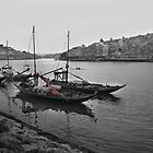 oporto naval by Les Pink