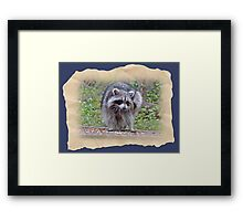 Itching and Scratching Framed Print