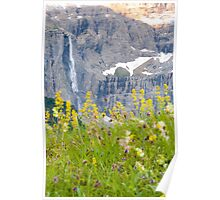 floral waterfall  Poster