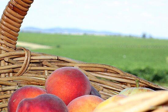 Fruit Basket by thewhitecottage