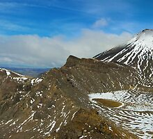 Taking in the Whole View - Mt Ngarauhoe, New Zealand by Phil McComiskey