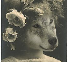 Pup by OddworldArt
