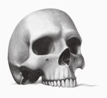 """call me morbid...""  realistic pencil skull by Sewlolita"