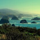 Sonoma Coast, N. California by Ascender Photography