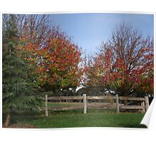 Autumn in Bowral Poster