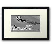 white horse in the snow Framed Print