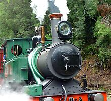 Wilderness Train at Strahan  -Tasmania by lighthousecove