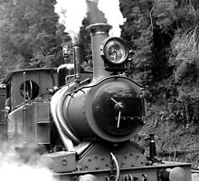 Wilderness Train at Strahan  -Tasmania   -B&W by lighthousecove