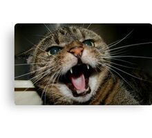 She Likes Me Best Canvas Print