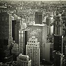 Looking Out Over The New York City Skyline by Vivienne Gucwa