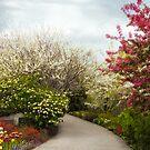 Springtime by Jessica Jenney