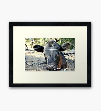 Trendy Hairstyle Framed Print