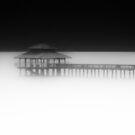 Misty Morning  by Hany  Kamel