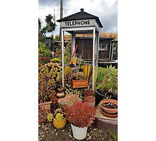 Telephone Booth Garden Photographic Print