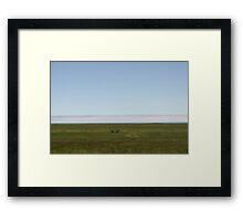 Minimalist Shore Line Framed Print