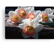 Beautiful Ladies Of Spring Canvas Print