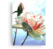 Sky Blue Pink - oil painting of a rose against the bright English sky Canvas Print