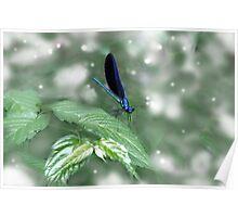 Leaf Dancing Poster