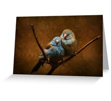 Male and Female Cordon Bleus Greeting Card