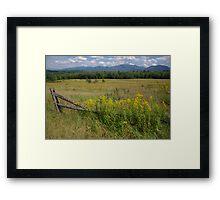 White Mountains & Meadows Framed Print