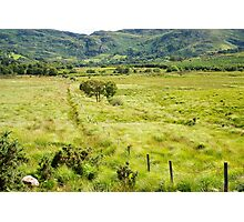 fence leading to rocky green mountains  Photographic Print