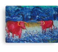 Pink Cows  Canvas Print