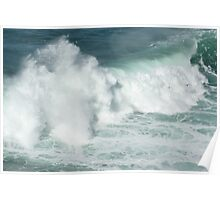 seabirds and wave Poster