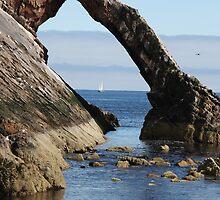Bow Fiddle Rock, scotland by Steve Phipps