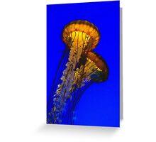 Jellyfish Shining in the Sea Greeting Card