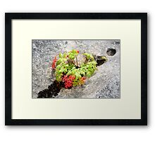 Colour display on limestone Framed Print