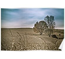 Agriculture lanscape Poster