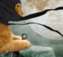 Cats plus Ninjas equals FUN Sticker