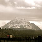 Mt. Hood from the Road by Charity Thompson