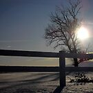 Snow Sunset by Charity Thompson
