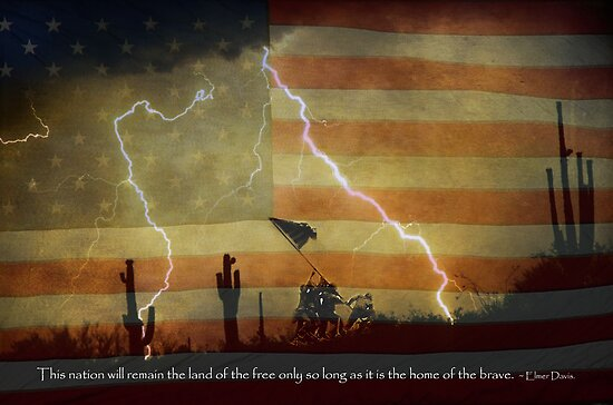 Land of the Free Home of the Brave by Bo Insogna