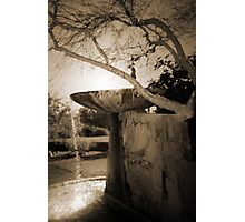 Fountain at Frank Lloyd Wright's Taliesin West Photographic Print