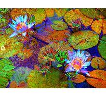 Secret Garden VI Photographic Print